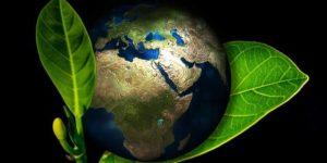 Globalisierung und Konsum